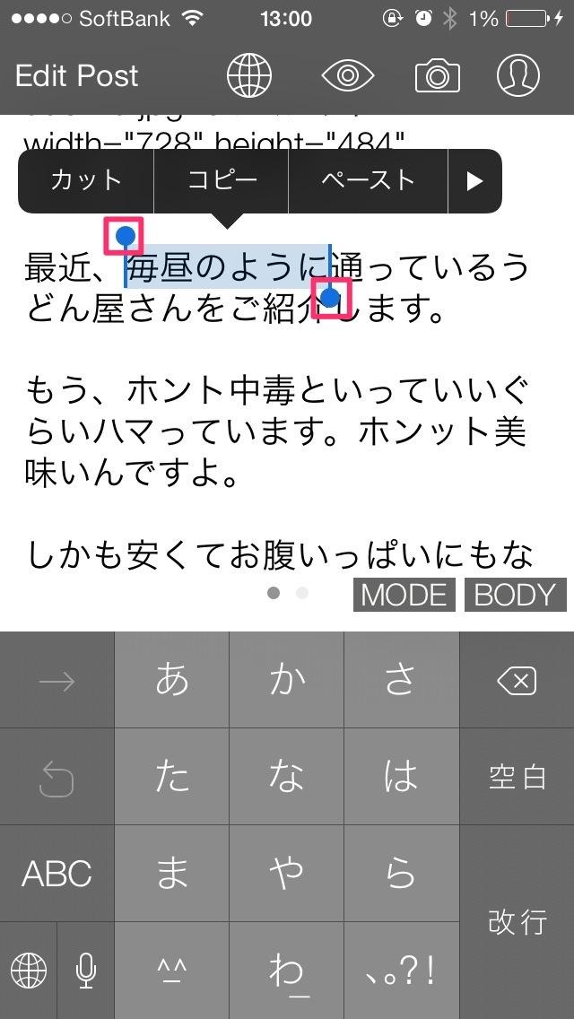 iOSでテキストを選択した状態