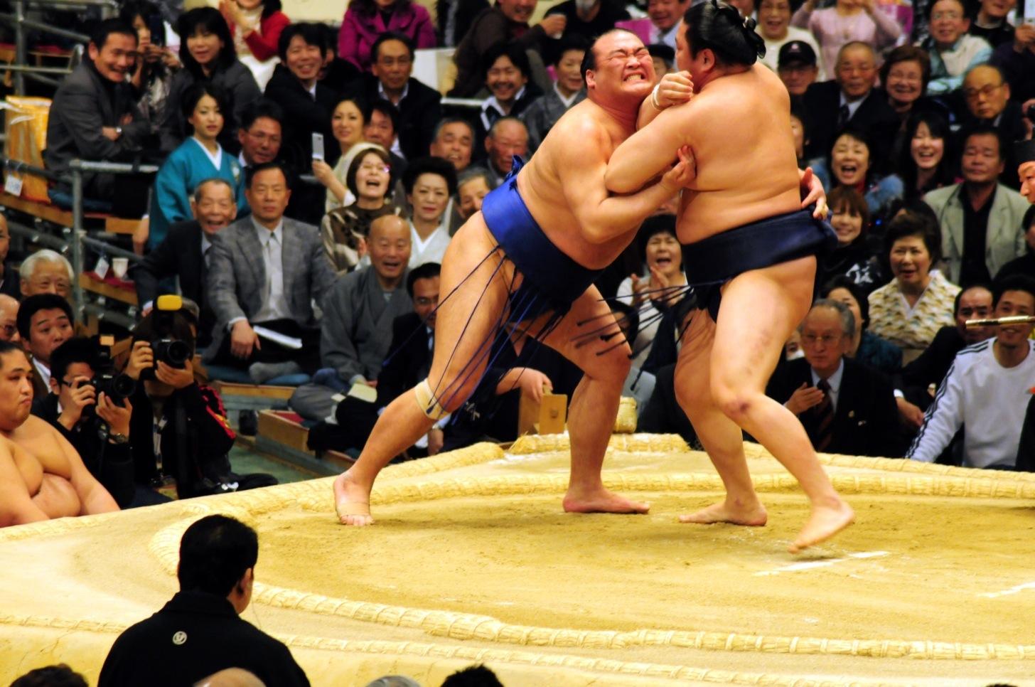 相撲(SUMOU)