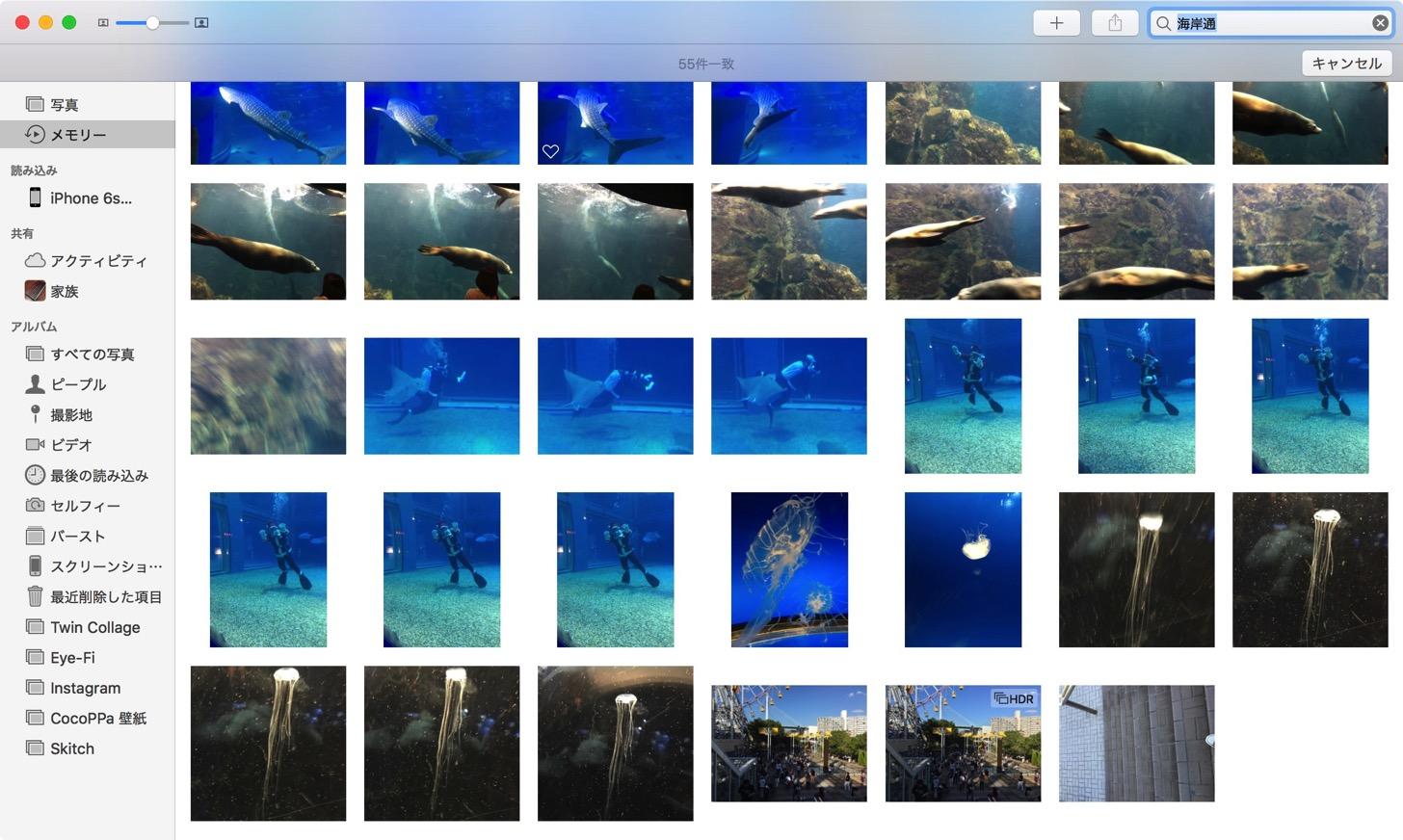 場所で写真を検索
