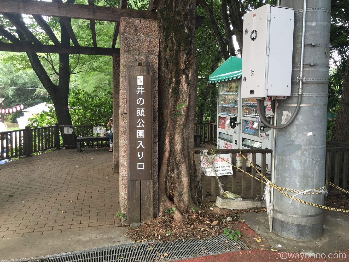 エビワラーが大量発生すると有名な井の頭公園