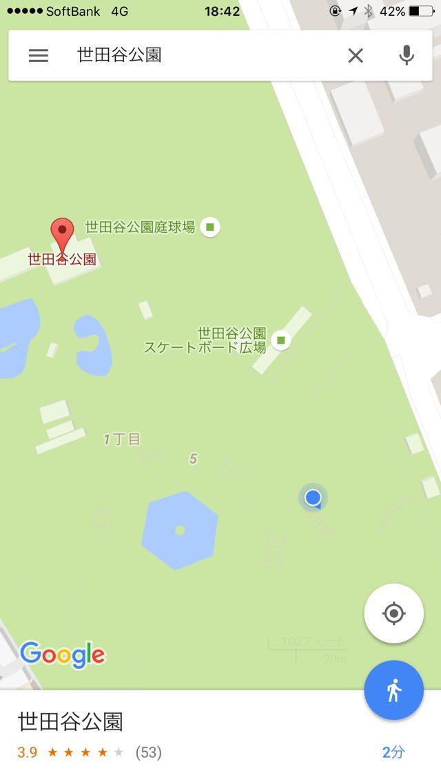 世田谷公園でミニリュウがよく出る場所