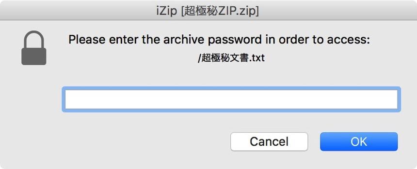 iZipにパスワードを入力