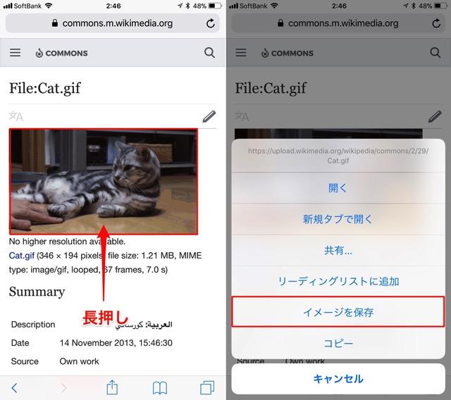 iOS11のgifの保存の仕方。
