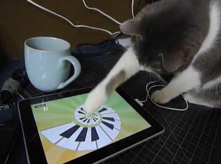 思わず顔もほころぶ、猫がiPadを操作するムービー。