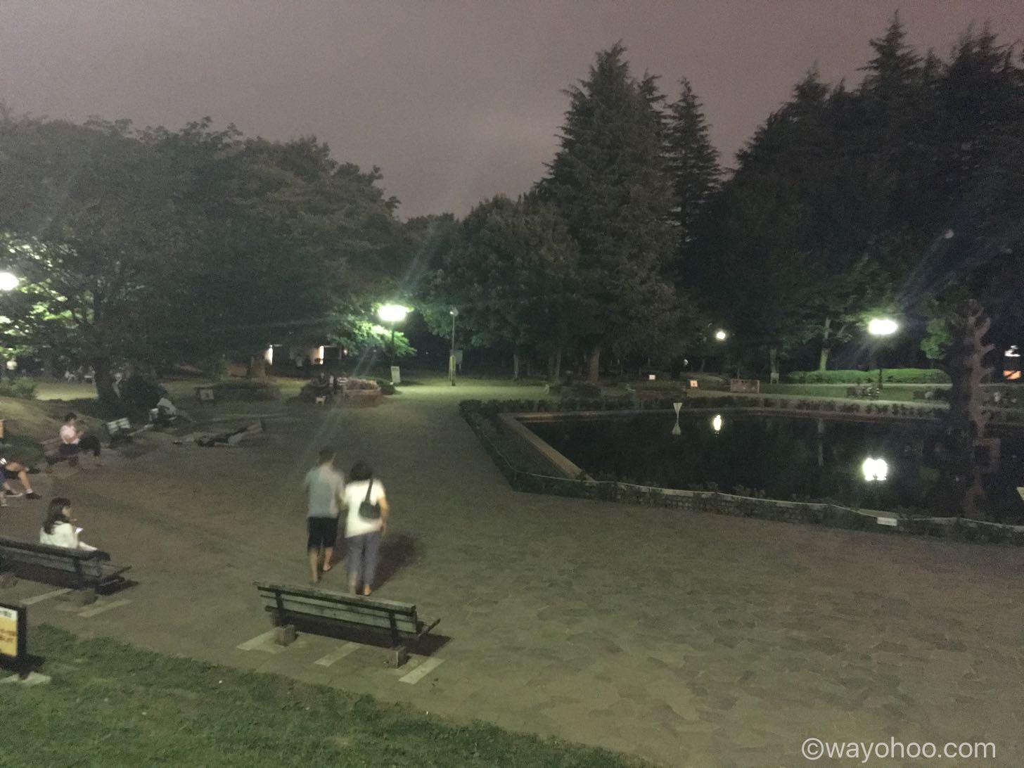 世田谷公園 イーブイの巣