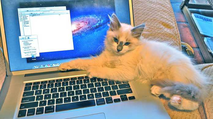 【Mac】Finderからフォトストリームにアクセスする方法。(1クリックでアクセスする方法を追記)